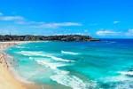 Wat te doen in Sydney?