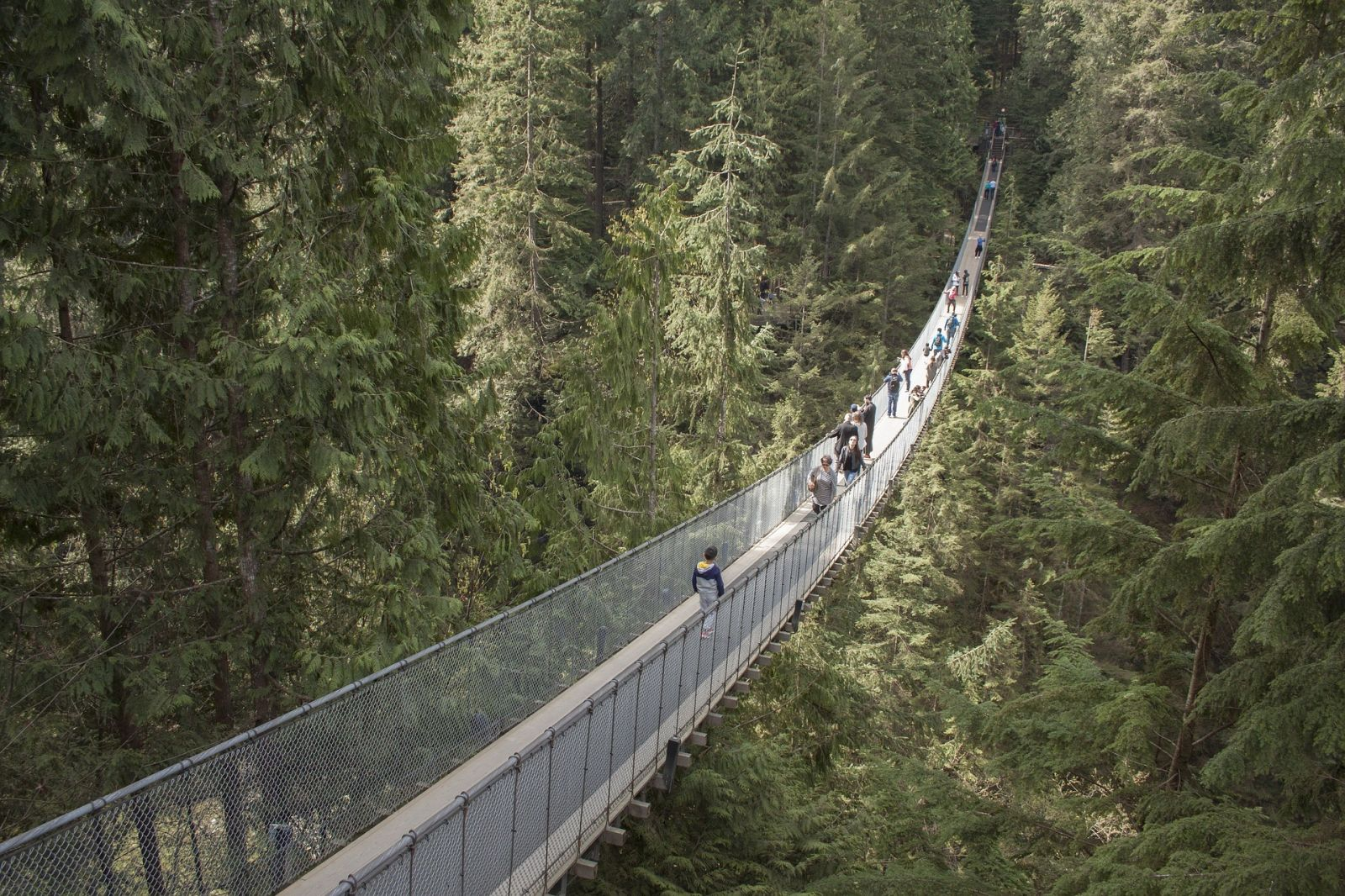 Capilano Suspension Bridge - de mooiste attractie van vancouver