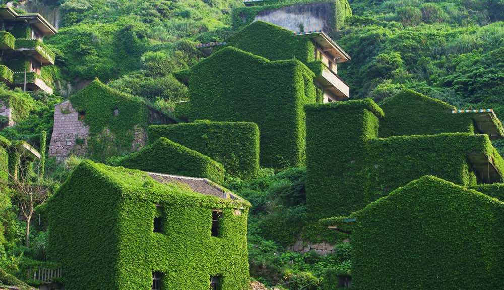 Shengsi met grasbegroeide huisjes houtouwan