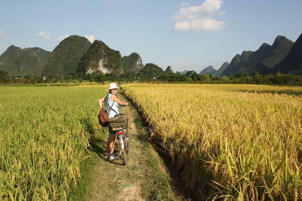 rijstvelden china