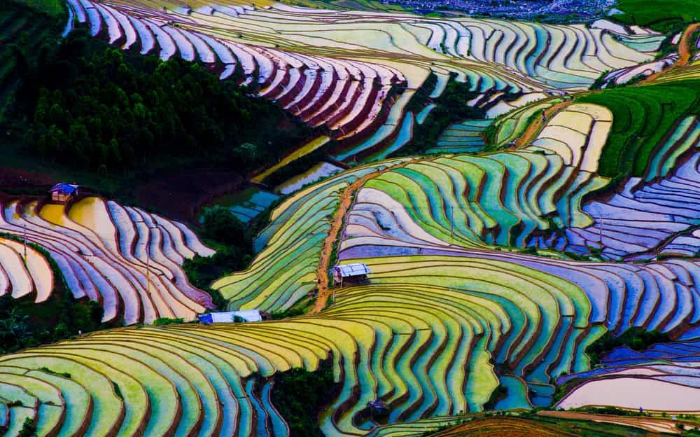 rijstterrassen in Yuangyang